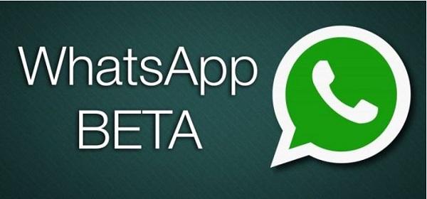 whatsapp beta apk ultimate version